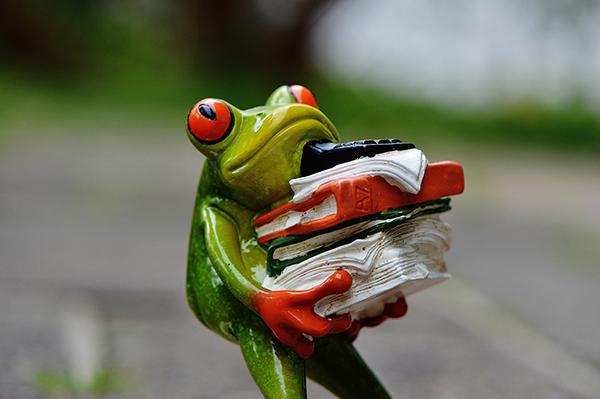 frosch trägt Bücher
